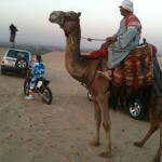 Egypt dunes with, YES, a Camel! haha